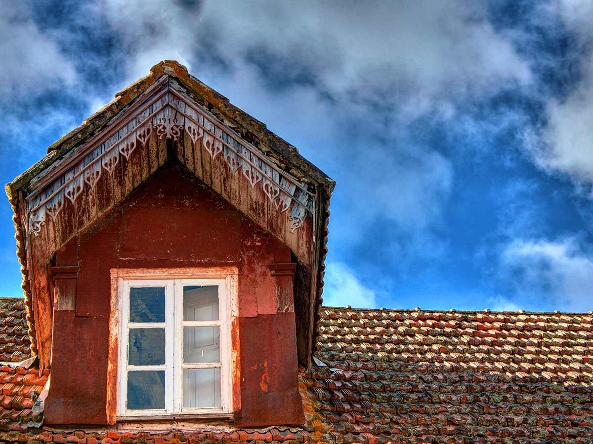 El verdín en el tejado